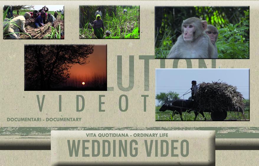cover-Kyolife - Evolution Videoteam