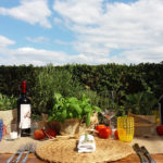 country_wedding_tuscany_cerinella_catering