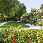 Garden  - Grand Hotel Dei Dogi