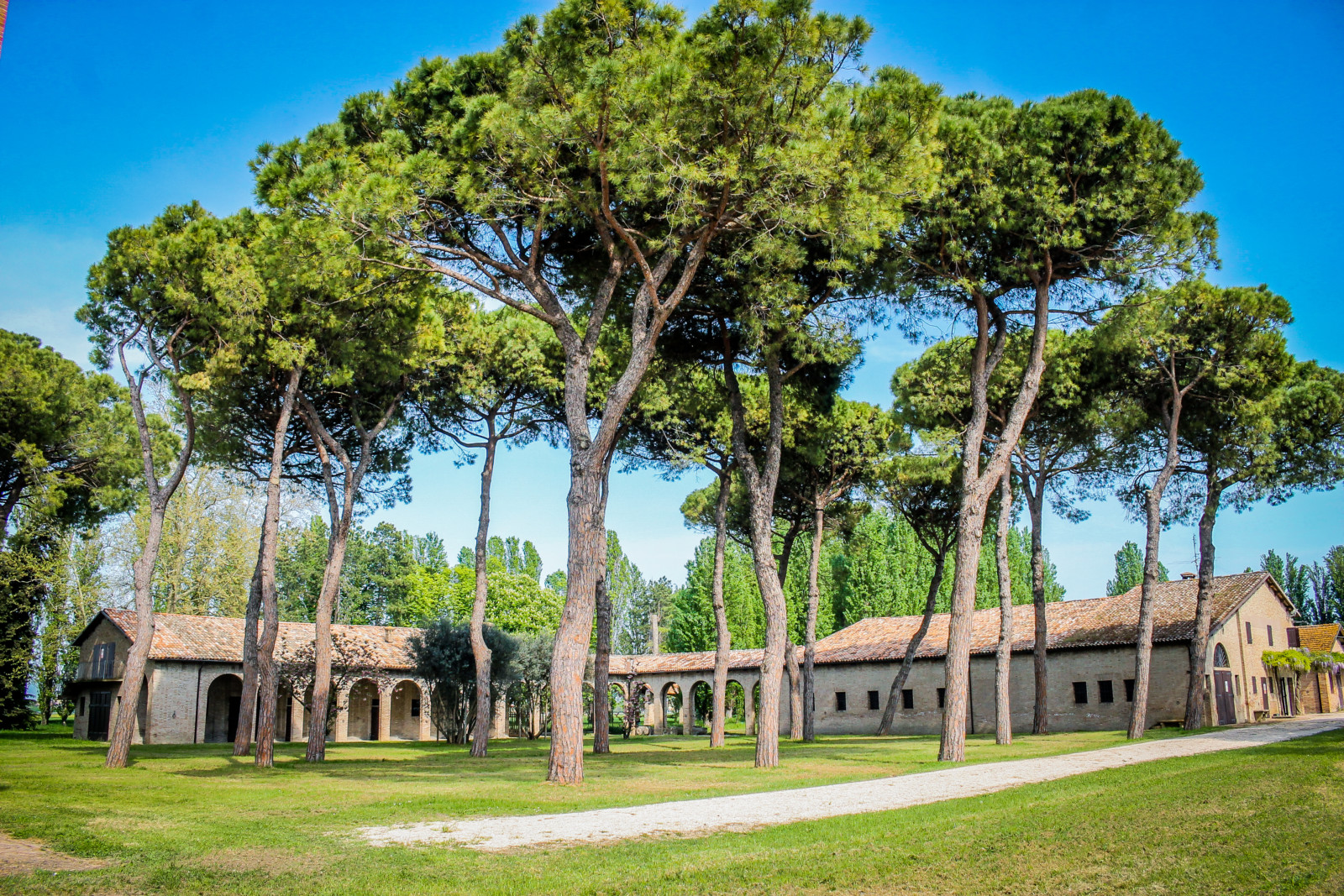 cover-Castello Benelli