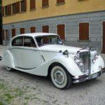 Jaguar-bianca-(14)