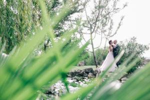 cover-Tenuta Monte della Nebbia