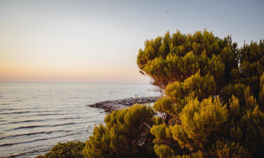 cover-Tenuta di Punta Licosa